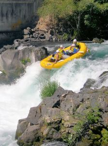 Thumb raft